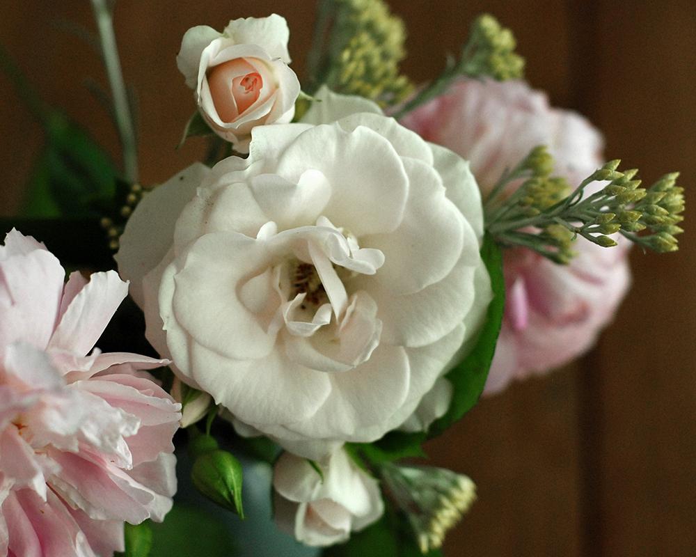 gartenblumen.jpg